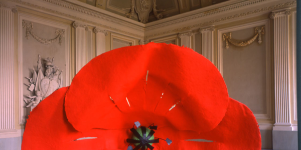 dropped_flower_2_oldenburg_van_bruggen